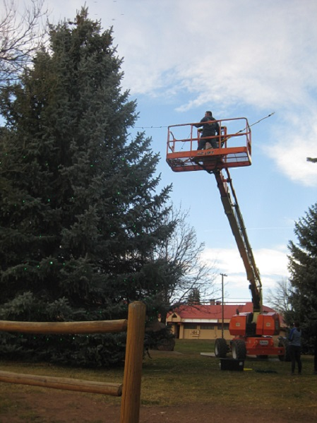 town employee decorate tree