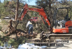 Jared McCain removing tree trunk /byKSpring